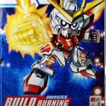 SD BB Build Burning-303[QL]