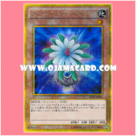GP16-JP001 : Glow-Up Bulb (Gold Secret Rare)