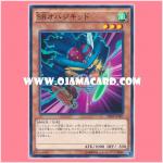 SPHR-JP007 : Speedroid Ohajikid (Common)