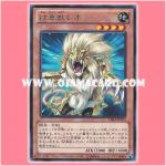 CBLZ-JP017 : Heraldic Beast Leo (Rare) 95%