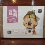 DIY Flower Pot - Pot Koala - กระถางต้นไม้