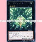 SHSP-JP055 : Tree Spirit of the Meliaes (Rare)