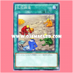 SR04-JP022 : Fossil Dig / Fossil Examination (Normal Parallel Rare)