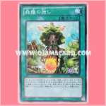 PRIO-JP062 : Sylvan Charity / Shinra's Charity (Common)