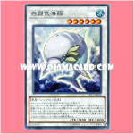 CP17-JP019 : White Aura Dolphin (Super Rare)