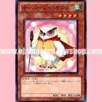 GAOV-JP003 : Overlay Owl (Common)
