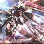 MG 1/100 (6630) Aile Strike Gundam Ver. RM [Daban]