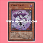 ABPF-JP012 : Witch of the Black Rose / Black Rose Witch (Super Rare)