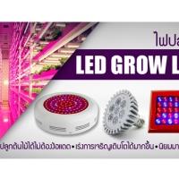 23. LED Growlight ไฟสำหรับปลูกต้นไม้,ปลูกผักไฮโดรโปนิกส์
