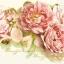 ลายดอกไม้ กระดาษแนปกิ้น เดคูพาจ 211253 thumbnail 1