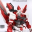 PG 1/60 Red Frame + Tactical Arms [Daban & M3Model] thumbnail 7