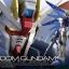 RG Freedom Gundam thumbnail 1