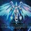 HG 1/144 RX-93-2 Hi-V Gundoom / Gundam (Limited Edition) thumbnail 2