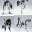 MG 1/100 ZGMF - X2D Gundam Astray Out Frame D [Momoko] thumbnail 2