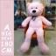 ตุ๊กตาหมีตัวใหญ่ขนาด 80 cm สีชมพู สีขาว สีน้ำตาลอ่อน สีน้ำตาลเข้ม thumbnail 2