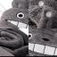 ผ้าคลุมไหล่ โตโตโร่ Totoro เนื้อผ้าขนหนู นุ่มๆๆค่ะ thumbnail 2