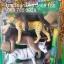สัตว์ป่าจำลองของเล่นเด็ก+Pop Up ตกแต่ง thumbnail 1