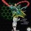 MG 1/100 Gundam Altron [Super Nova] thumbnail 7