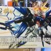 (Plavsky particle clear Ver. C3 HK Limited) Build Strike Gundam Full Package