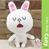 ตุ๊กตา Line cony ขนาด 40 cm.