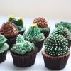 Cuctus Cupcake