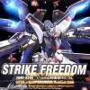 Strike Freedom