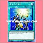 SDMY-JP029 : Card of Sanctity / Treasure Cards from the Heavens (Common)