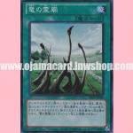SD25-JP020 : Hallowed Dragon Boneyard (Super Rare)