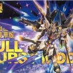 MG (004) 1/100 Strike Freedom Gundam Full Burst Mode