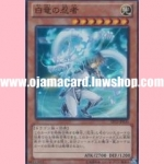 EP12-JP035 : White Dragon Ninja (Super Rare)