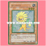 GS01-KR002 : Dandylion (Gold Rare)