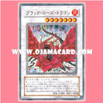 CSOC-JP039 : Black Rose Dragon (Ultra Rare)