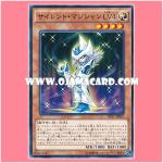 DP17-JP019 : Silent Magician LV4 (Common)