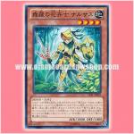 LVAL-JP018 : Sylvan Flowerknight / Narcis, Flower Knight of Shinra (Common)