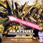 HG SEED (15) 1/100 Akatsuki Gundam