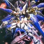 MG (003) 1/100 Strike Freedom Gundam