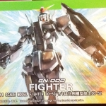 HG OO (52) 1/144 O Gundam/ O Gundam Fighter + ปีกแสง