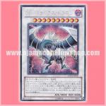 YMP1-JP007 : Malefic Paradox Dragon / Sin Paradox Dragon (Secret Rare)