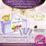 Pine Bark Extract Plus