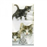 แนพกิ้น20x20 Cute Cat PT-431200