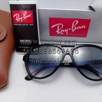 RB 4125 cats black