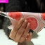 (440-102)เคสมือถือออปโป้ OPPO N1mini เคสนิ่มพื้นหลังลายสวยๆน่ารักๆ thumbnail 2